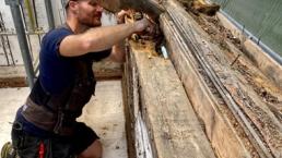 Bovg Bygg: Skadesanering og rehabilitering
